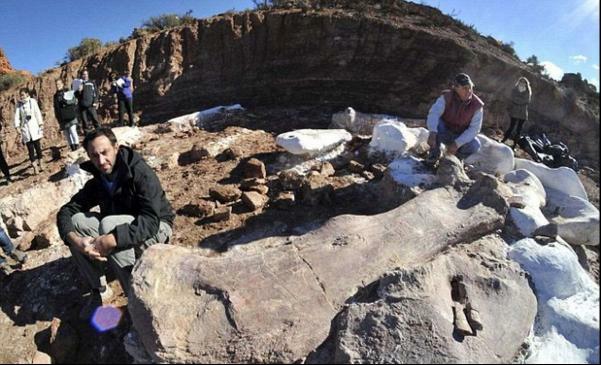 skelet-gigantskogo-100-tonnogo-dinozavra-obnaruzhili-v-patagonii-foto--video-1jpg_23723