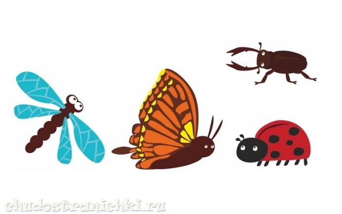 Дорисуй насекомых