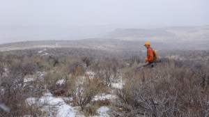 Snowy chukar hunt in the Owyhees