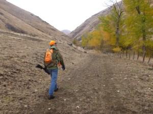 Man walking in the fall with a gun