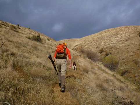 Man hiking uphill in search of chukar