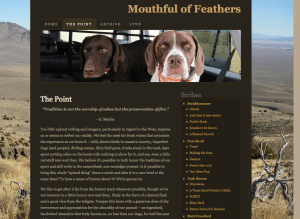 Great upland bird blog - Mouthful of Feathers