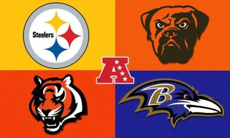 NFL Football AFC North