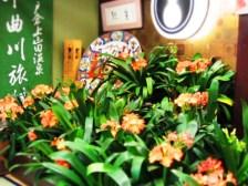 君子蘭千曲市戸倉上山田温泉中央ホテル