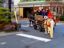 戸倉上山田温泉クリスマス馬車