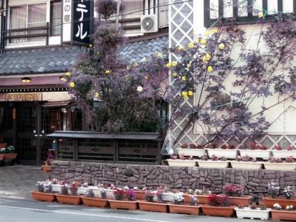 戸倉上山田温泉中央ホテルバラ開花
