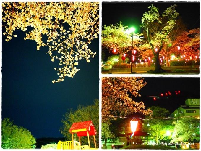 桜満開戸倉上山田温泉中央公園夜桜