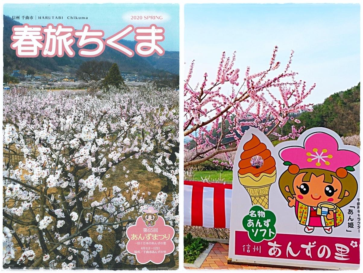 【春旅ちくま】あんずの里&桜の名所 春の観光案内