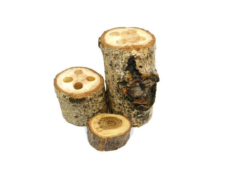 tocones de madera con agujeros montados para hacer portalapiceros rustico