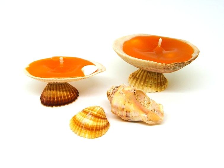 ¿Sabes cómo hacer velas decorativas con conchas de mar?