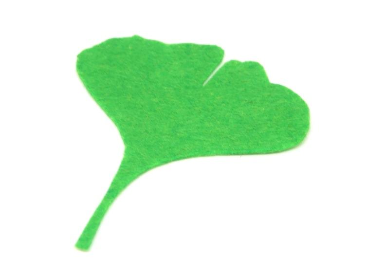 hoja caduca de fieltro verde