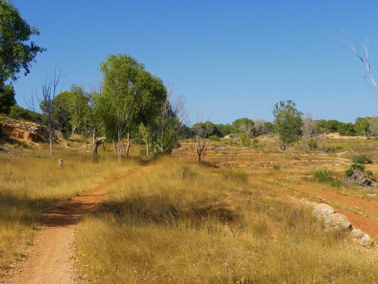 zonas de cultivo en la fulla rotja sierra de santa pola