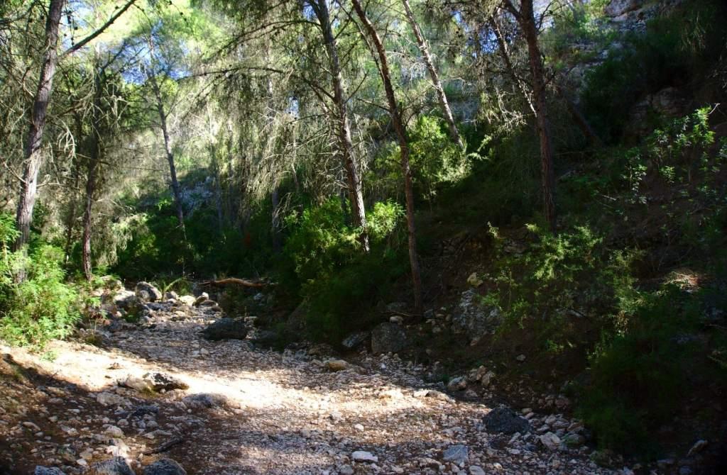 camino entre las pendientes del barranco de paco mañaco santa pola