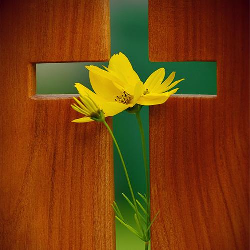 What is Faith...