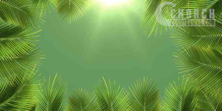 Palm Sunday Bright 2 Preview