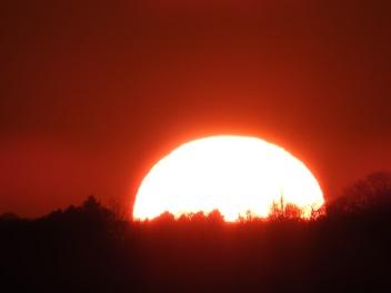 Tyler - setting sun