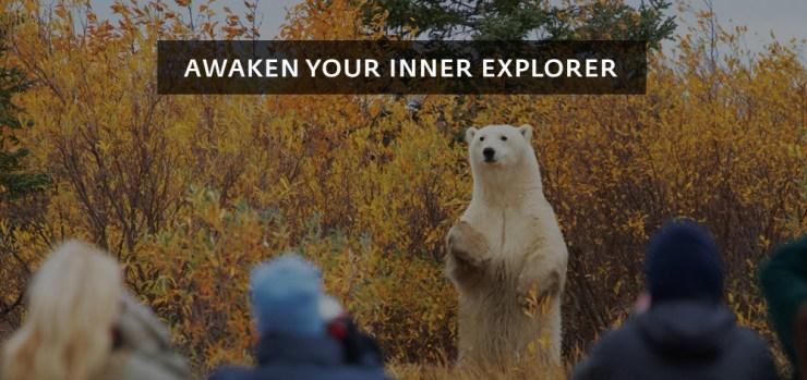 header-awaken-your-inner-explorer-walk-polar-bears