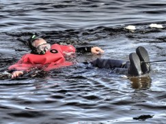 swimmingwithbelugas2