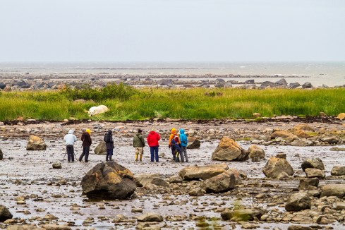 Guest viewing polar bear at ground level. Seal River Heritage Lodge. Didrik Johnck photo.
