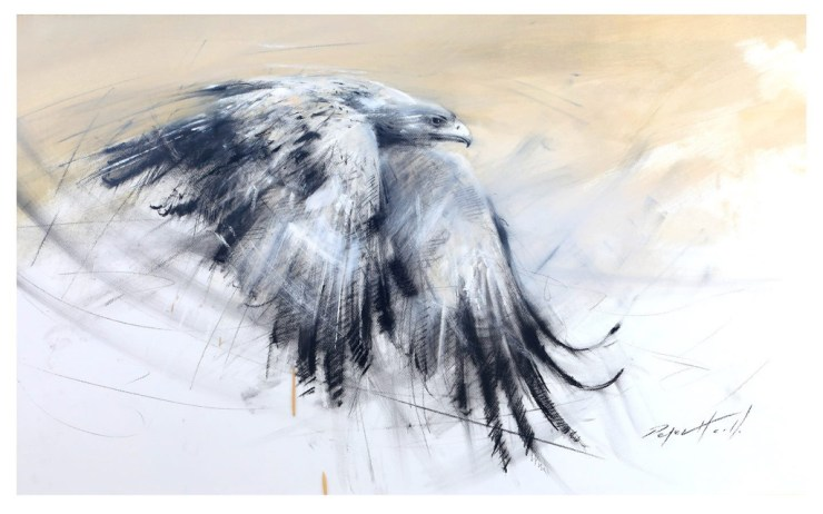Tawny Eagle by Peter Hall. Click image to see more of Peter's paintings.