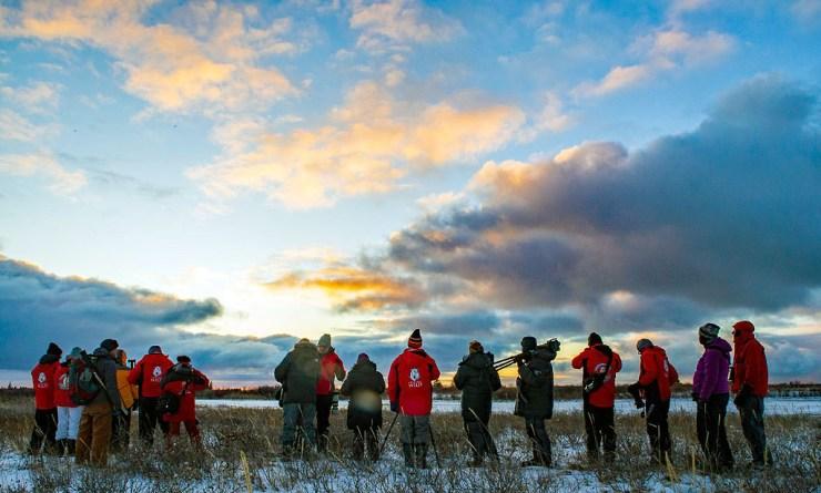 Polar bear photographers. Nanuk Polar Bear Lodge. Steve Zalan photo.
