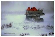 Into the snowy wild. Nanuk Polar Bear Lodge. Peter Hall photo.