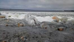 Ice forming on Hudson Bay. Seal River Heritage Lodge. Nicole Spinks photo.