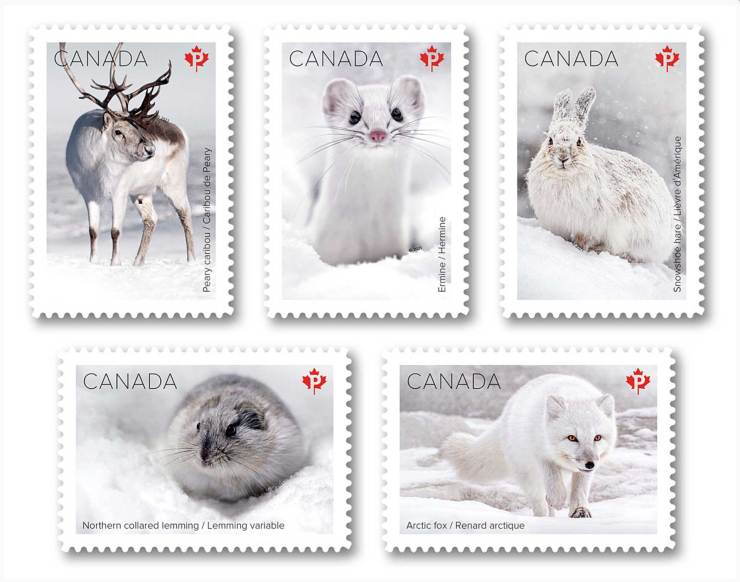 New Canada Post Snow Mammals Collection