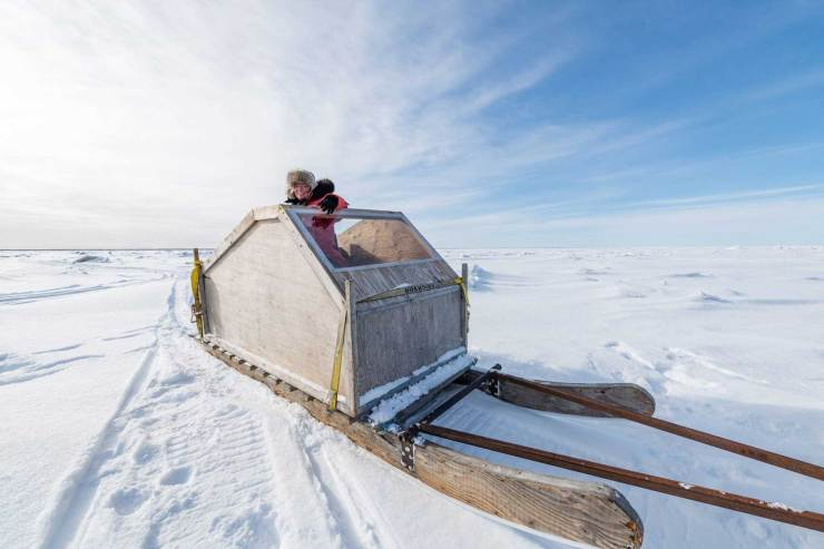 Gillian on the Hudson Bay sea ice at Nanuk. Ready to roll!