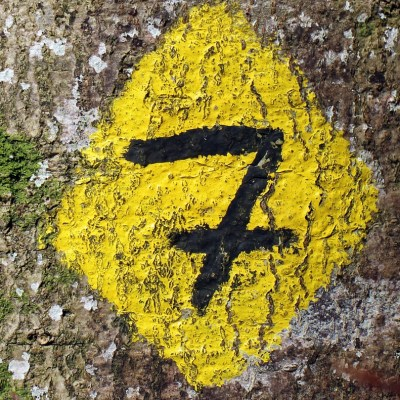 7 Ways to Lead with Exceptional Influence