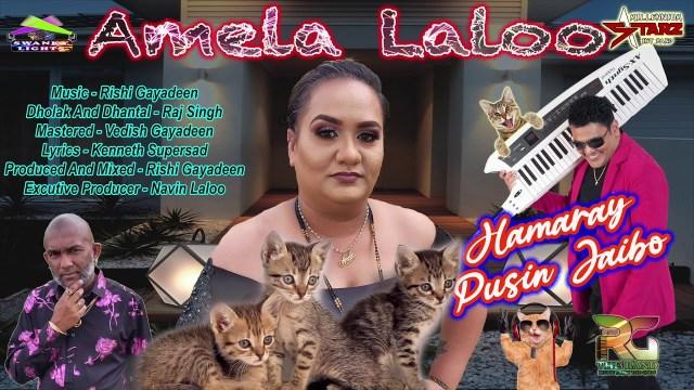 Amela Laloo - Hamaray Pusin Jaibo