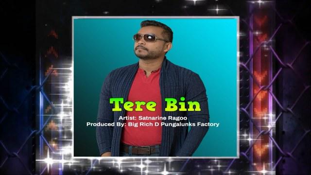 Satnarine Ragoo Tere Bin (2019 Bollywood Cover)