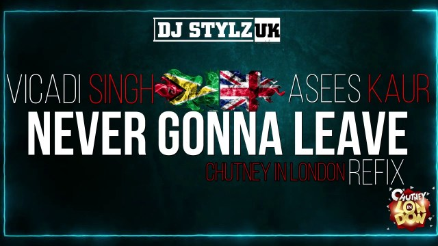 Vicadi Singh X Asees Kaur - Never Gonna Leave