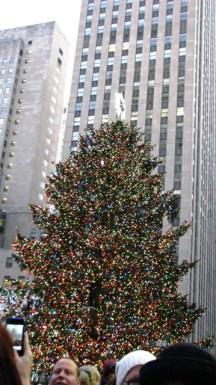 cây thông ở Rockerfeller Center