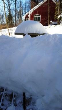 tuyết cỡ nào, tuyết cỡ này