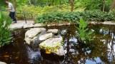 Đây là nguồn suối. Dòng suối quanh co trong hồ này là suối nhân tạo. Ở đầu nguồn người ta bơm nước và để nước chảy theo độ cao thấp tự nhiên của sườn đồi.