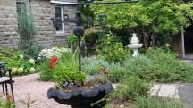 Những thứ trang trí trong sân. Có một vạt rau vấp cá chủ nhân trồng thay thế loại cỏ trồng để che lấp đất trống. Bà này không biết, vấp cả sẽ lấn át tất cả các loại cỏ khác trong vườn.
