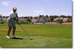 visitors-golf