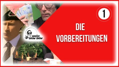 Photo of Marios Grow Show | Folge 1 – Die Vorbereitungen