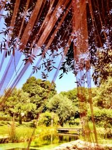 Figueirinha- a B&B with glamping in Alentejo-Portugal