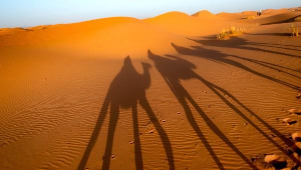 Sahara Camel Trek, Morocco