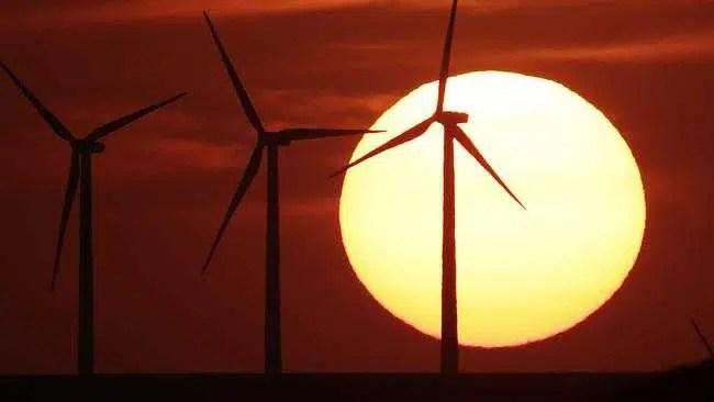 Sunshine State pode ser líder mundial em energia limpa e criar 20.000 empregos