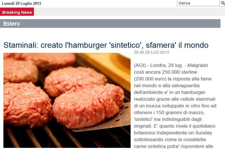 Hamburger Sintetico Agi