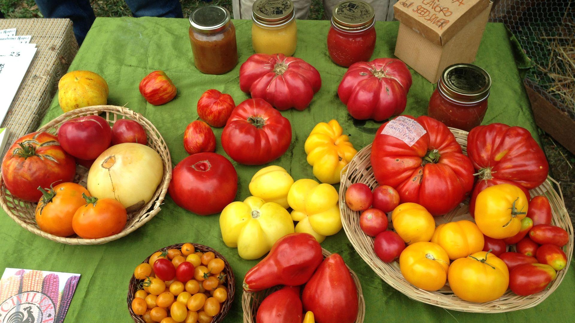 I Pomodori di Civiltà Contadina alla Biofera