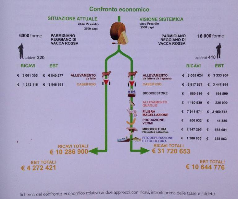 Confonto Economico Produzione Vacca Rossa Reggiana con Design Sistemico