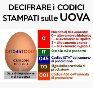 Decifrare i Codici Stampati sulle Uova