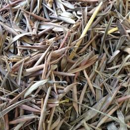 Bokashi - Le foglie di Olivo