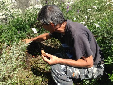 Raetia Biodiversità Alpine - Patate Sotto la Paglia Patrizio Mazzucchelli con una Patata Parli