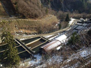Agroittica San Fiorino - Impianto