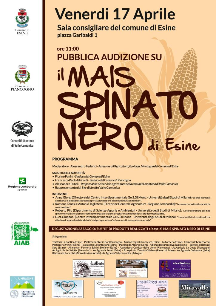 Mais Spinato Esine
